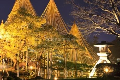 冬の兼六園ライトアップの写真素材 [FYI01816703]