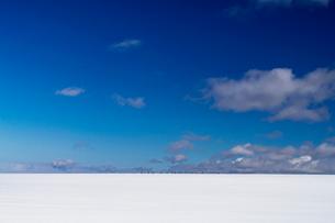 北海道 美瑛町 白金模範牧場の写真素材 [FYI01816740]