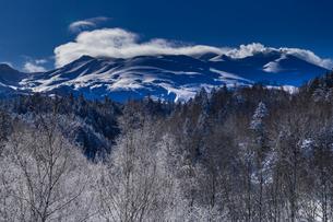 北海道 美瑛岳 霧氷の写真素材 [FYI01816816]