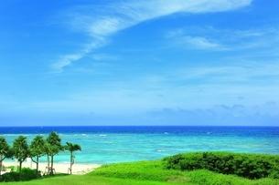 ニライビーチの海の写真素材 [FYI01816831]