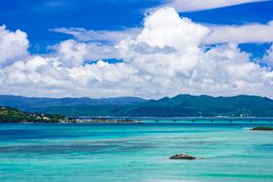 嵐山展望台より望む羽地内海の写真素材 [FYI01816889]