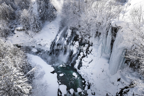 北海道 美瑛町 白髭の滝の写真素材 [FYI01816979]