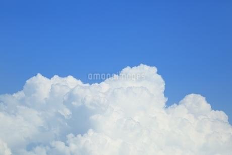 入道雲と青空の写真素材 [FYI01817002]
