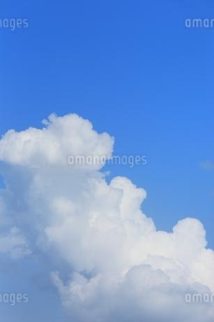 入道雲と青空の写真素材 [FYI01817028]