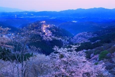 吉野山のサクラの写真素材 [FYI01817056]