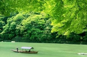 新緑の嵐山と屋形船の写真素材 [FYI01817113]