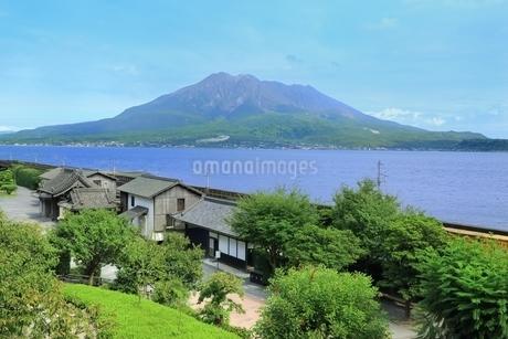 仙巌園と桜島の写真素材 [FYI01817120]