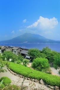 仙巌園と桜島の写真素材 [FYI01817142]