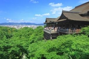 新緑の清水寺の写真素材 [FYI01817169]