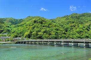 新緑の嵐山と渡月橋の写真素材 [FYI01817187]