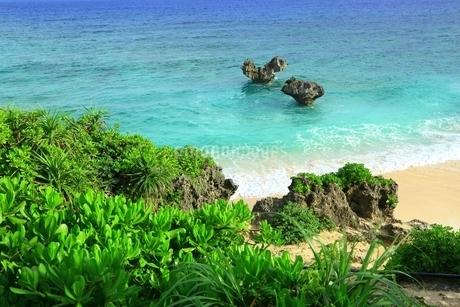 ティーヌ浜の海の写真素材 [FYI01817222]