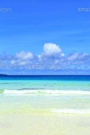 砂山ビーチと青い海の写真素材 [FYI01817245]