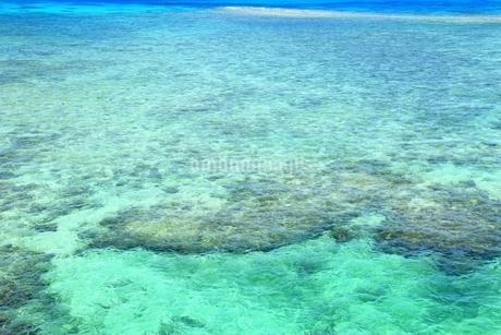 宮古ブルーの海の写真素材 [FYI01817251]