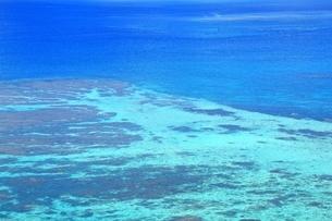 サンゴ礁の海の写真素材 [FYI01817271]