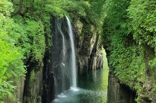 高千穂峡 真名井の滝の写真素材 [FYI01817273]