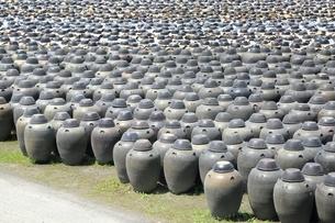 黒酢の壺畑の写真素材 [FYI01817299]
