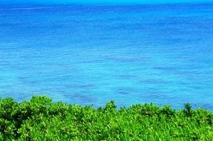 西平安名崎と青い海の写真素材 [FYI01817330]