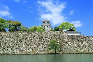 新緑の今治城の写真素材 [FYI01817338]