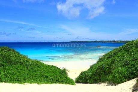 砂山ビーチと青い海の写真素材 [FYI01817406]