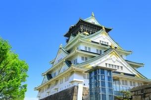新緑の大阪城天守閣の写真素材 [FYI01817422]