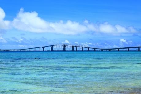 伊良部大橋と青い海の写真素材 [FYI01817428]