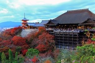 夕焼けの清水寺に紅葉の写真素材 [FYI01817458]