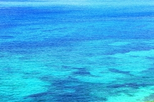 サンゴ礁の海の写真素材 [FYI01817493]