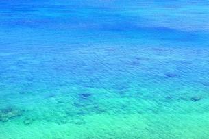 サンゴ礁の海の写真素材 [FYI01817511]