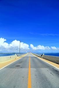 伊良部大橋の写真素材 [FYI01817513]