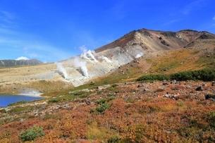 秋の大雪山 旭岳の写真素材 [FYI01817532]
