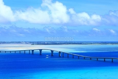 伊良部大橋と青い海の写真素材 [FYI01817570]