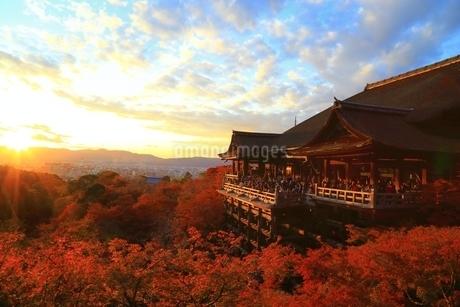 夕焼けの清水寺に紅葉の写真素材 [FYI01817586]