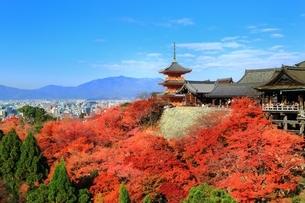 清水寺の紅葉の写真素材 [FYI01817598]