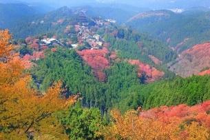 秋の吉野山の写真素材 [FYI01817623]