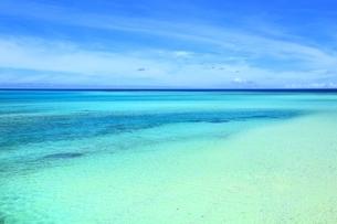 宮古ブルーの海の写真素材 [FYI01817643]