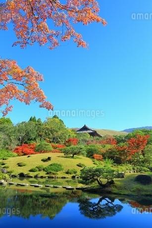 紅葉の依水園の写真素材 [FYI01817646]