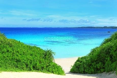 砂山ビーチと青い海の写真素材 [FYI01817675]
