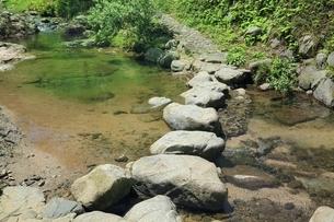 飛鳥川万葉の飛び石の写真素材 [FYI01817749]