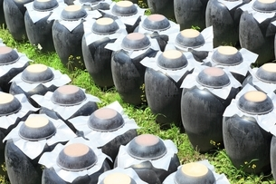 黒酢の壺畑の写真素材 [FYI01817765]