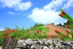 竹富島 ブーゲンビリア咲く赤瓦屋根の民家の写真素材 [FYI01817780]