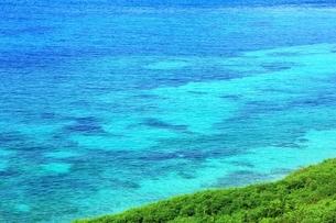 サンゴ礁の海の写真素材 [FYI01817799]