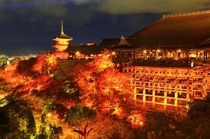 紅葉の清水寺にライトアップの写真素材 [FYI01817819]