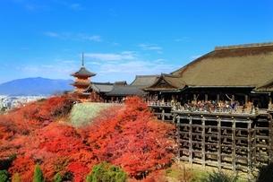 清水寺の紅葉の写真素材 [FYI01817825]