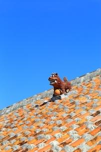 竹富島 赤瓦屋根とシーサーの写真素材 [FYI01817863]