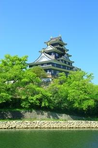 新緑の岡山城と旭川の写真素材 [FYI01817985]
