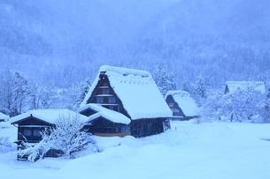 降雪の白川郷の写真素材 [FYI01818066]