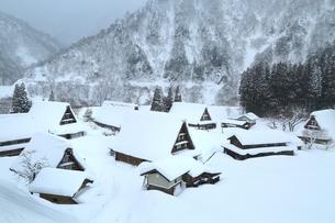 五箇山 雪の菅沼合掌集落の写真素材 [FYI01818073]