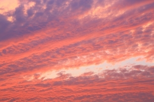 夕焼けの雲の写真素材 [FYI01818077]