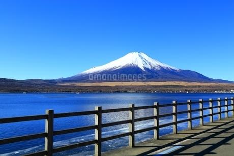 山中湖より望む富士山の写真素材 [FYI01818162]