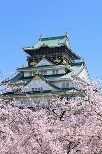 大阪城天守閣と桜の写真素材 [FYI01818172]
